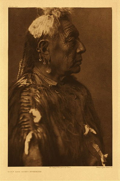 Edward S. Curtis -   Plate 123 Wolf Lies Down - Apsaroke border=