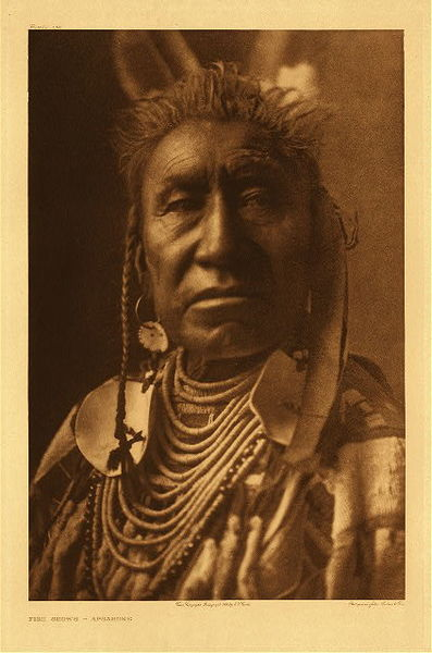 Edward S. Curtis - Plate 135 Fish Shows - Apsaroke border=