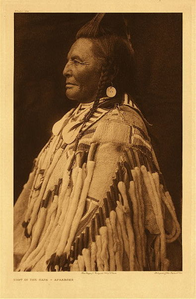 Edward S. Curtis - Plate 133 Shot in the Hand - Apsaroke border=