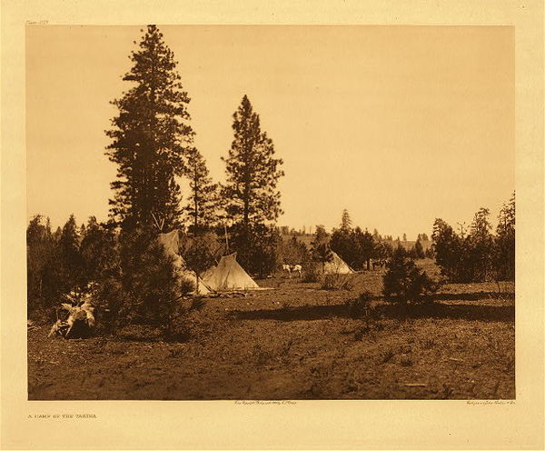 Edward S. Curtis -   Plate 223 A Camp of the Yakima border=