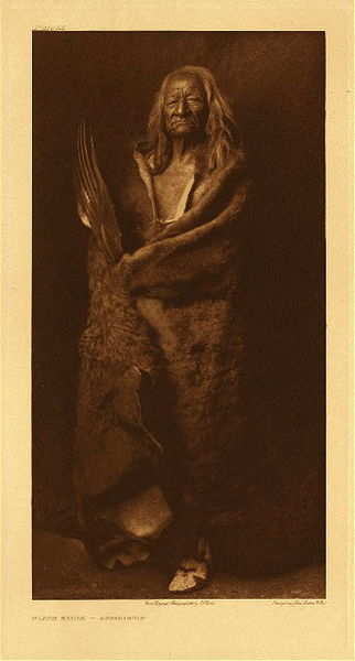 Edward S. Curtis - Plate 101 Black Eagle - Assiniboin border=
