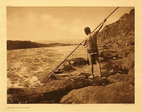 Edward S. Curtis -   Plate 276 Spearing Salmon - Wishham, 1909 border=