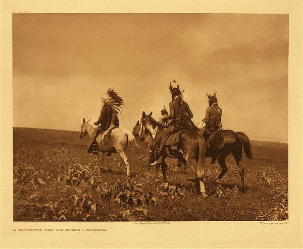 Edward S. Curtis - Plate 138 Successful Raid for Horses - Apsaroke border=