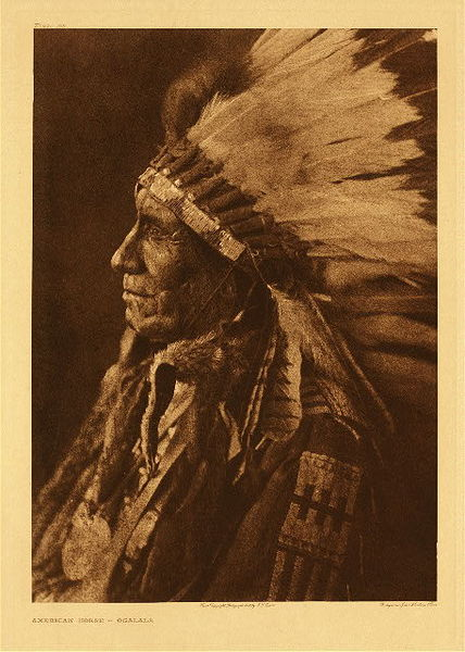 Edward S. Curtis -   Plate 108 American Horse - Ogalala border=