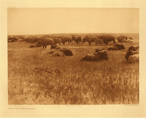 Edward S. Curtis - Plate 652 As It Was In the Old Days border=