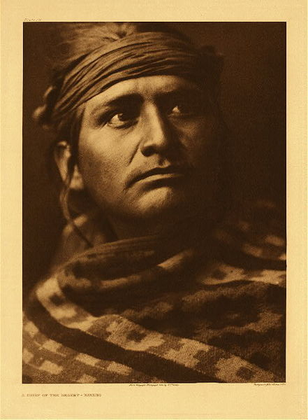 Edward S. Curtis -   Plate 026  A Chief of the Desert - Navaho border=