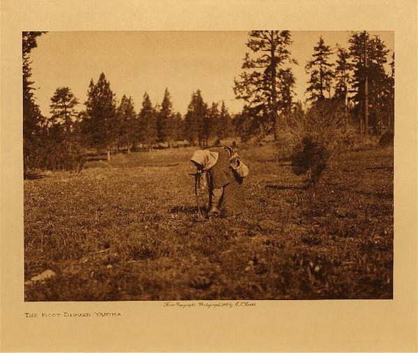 Edward S. Curtis - The Root Digger - Yakima border=