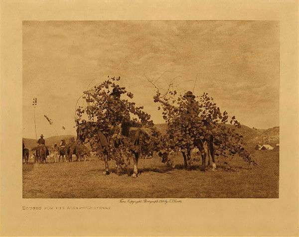 Edward S. Curtis - Boughs for the Altar - Cheyenne border=