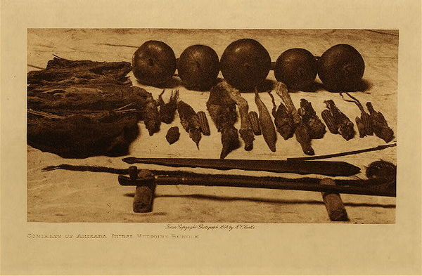 Edward S. Curtis - Contents of Arikara Tribal Medicine Bundle border=