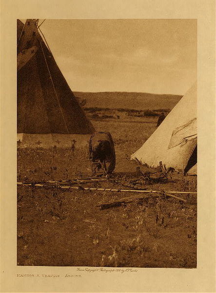 Edward S. Curtis - Making a Travois - Atsina border=
