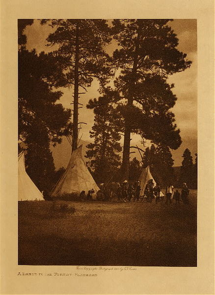 Edward S. Curtis - A Dance in the Forest - Flathead border=