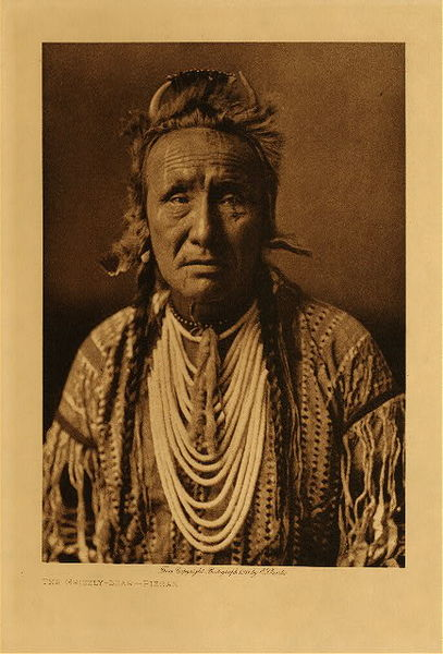 Edward S. Curtis - The Grizzly Bear - Piegan border=