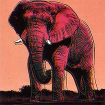 Title: African Elephant , Date: 1983 , Size: 38 x 38 inches , Medium: Screenprint , Signed: Signed , Edition: 37/150