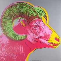 Title: Bighorn Ram , Size: 38 x 38 inches , Medium: Screenprint , Signed: Signed , Edition: TP/30