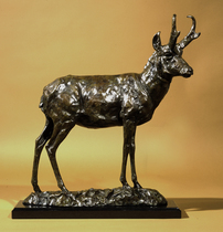 Title: A Part of the Prairie (Pronghorn Antelope Buck) , Size: 23