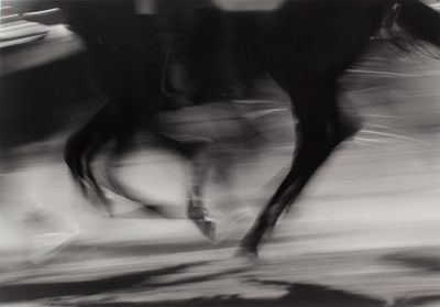 Title: Dance of the Runaway Horses , Size: 13 1/8 x 19 3/16 inches , Medium: Silver Gelatin Photograph , Signed: L/R