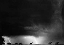 Title: Hot Storm , Date: 1993 , Size: 17 7/8 x 23 inches , Medium: Silver Gelatin Photograph , Edition: 128/150