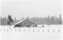 Title: Easy Winter , Size: 13 10/16 x 19 7/16 inches , Medium: Silver Gelatin Photograph , Signed: L/R , Edition: 28/ 125