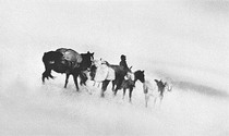 Title: Ground Blizzard , Size: 15 1/2 x 23 inches , Medium: Silver Gelatin Photograph , Signed: Signed , Edition: 106/150