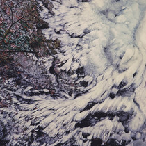 Title: Winged Winter Ice , Size: 30 x 30 inches , Medium: Cibachrome Photograph , Signed: L/R , Edition: #6