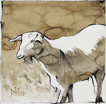 Title: Gesture Drawing (Goat) , Size: 18 x 18 inches , Medium: Dead stick ink drawing , Signed: Signed , Edition: Original