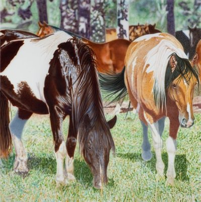 Title: Resor's Ponies , Size: 5 x 5 ft , Medium: Acrylic , Signed: Signed