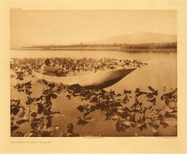 Title:   Plate 462 The Wokas Season - Klamath , Date: 1923 , Size: Portfolio, 18 x 22 inches , Medium: Vintage Photogravure , Edition: Vintage