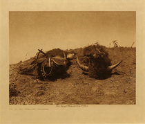 Title: The Buffalo-Medicine - Arikara, Vol. V , Date: 1908 , Size: Volume, 9.5 x 12.5 inches , Medium: Vintage Photogravure , Edition: Vintage