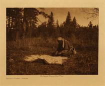Title: Drying Piahe - Yakima , Date: 1909 , Size: Volume 9.5 x 12.5 inches , Medium: Vintage Photogravure , Edition: Vintage