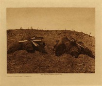 Title: The Bear Medicine - Arikara , Date: 1908 , Size: Volume, 9.5 x 12.5 inches , Medium: Vintage Photogravure , Edition: Vintage