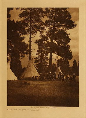Title: A Dance in the Forest - Flathead , Date: 1907 , Size: Volume, 12.5 x 9.5 inches , Medium: Vintage Photogravure , Edition: Vintage