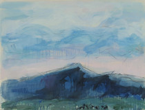 Title:   Ross Peak Angus Dr #8 , Size: 30 x 40 inches , Medium: Oil, Encaustic, Graphite on Paper , Signed: Signed , Edition: Original