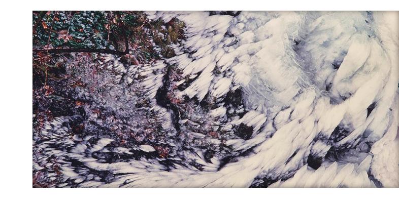 Winged Winter Ice, Oregon Christopher Burkett